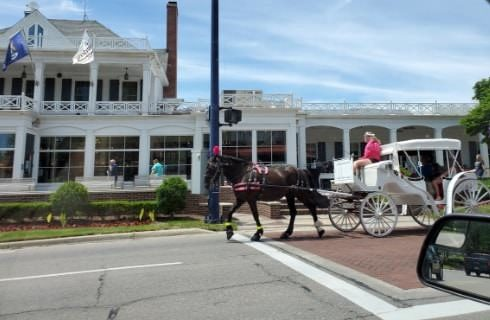 Black horse pulling white carriage on street in front of large white building